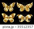 蝶 蝴蝶 虫のイラスト 35512357