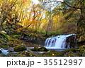 蓼科大滝 秋 滝の写真 35512997