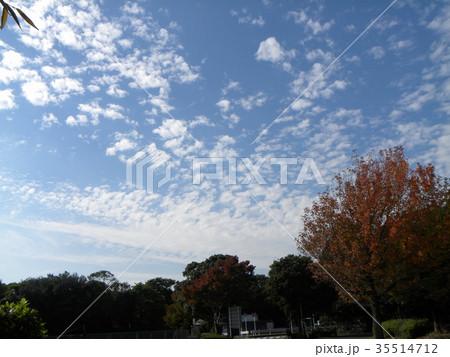 秋の谷津干潟公園の青空と白い雲 35514712