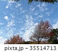 青空 白雲 秋の写真 35514713