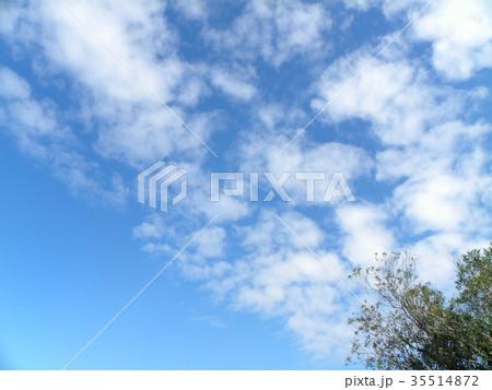 秋の稲毛海浜公園の青空と白い雲 35514872