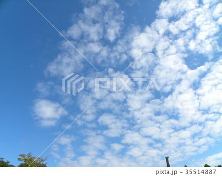 秋の稲毛海浜公園の青空と白い雲 35514887