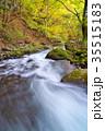 杜鵑峡 渓谷 秋の写真 35515183