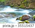 杜鵑峡 渓谷 渓流の写真 35515437