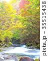 杜鵑峡 渓谷 秋の写真 35515438