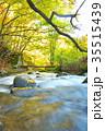 杜鵑峡 渓谷 渓流の写真 35515439