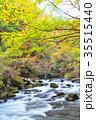 杜鵑峡 渓谷 渓流の写真 35515440