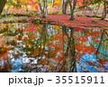 軽井沢雲場池紅葉 35515911