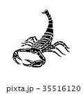Aggressive black and white Scorpion for tattoos 35516120