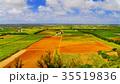 南大東島 風景 サトウキビの写真 35519836