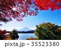 富士 富士山 河口湖の写真 35523380
