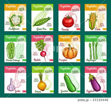 Vector sketch fam vegetables or veggies posters 35530446