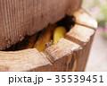 養蜂13 35539451