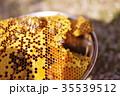 養蜂21 35539512