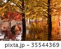 土師ダム 湖 紅葉の写真 35544369