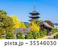 京都 東寺 五重塔の写真 35546030