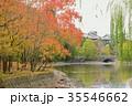 秋 紅葉 奈良公園の写真 35546662