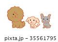 おすわりする犬 年賀状素材 35561795