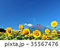 富士山 青空 夏の写真 35567476