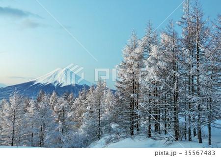 富士山と冬の樹氷 35567483
