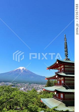 新緑の葉桜と五重塔 そして富士山 35567488