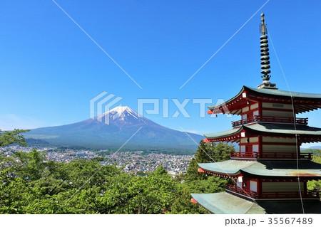新緑の葉桜と五重塔 そして富士山 35567489