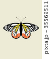 Butterfly Icon Vector 35569511
