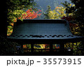大窪寺 寺 秋の写真 35573915