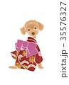 戌 犬 トイプードルのイラスト 35576327