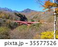 清里高原 紅葉 八ヶ岳の写真 35577526