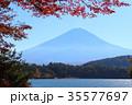 河口湖 富士山 秋の写真 35577697