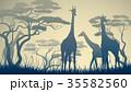 動物 きりん キリンのイラスト 35582560