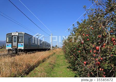大糸線 りんご畑の秋 35585672