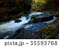 渓流 流れ 秋の写真 35593768