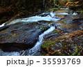 渓流 流れ 秋の写真 35593769