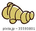 生姜 薬味 食材 35593801