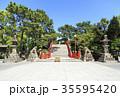 大阪府・住吉大社・反橋(太鼓橋) 35595420
