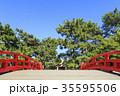 大阪府・住吉大社・反橋(太鼓橋) 35595506