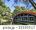 大阪府・住吉大社・反橋(太鼓橋) 35595517