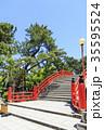 大阪府・住吉大社・反橋(太鼓橋) 35595524