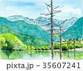 水彩画 上高地 35607241
