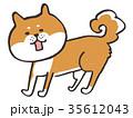 柴犬_2018干支 35612043