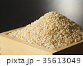 玄米 米 食材の写真 35613049