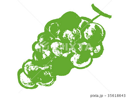 ぶどう 葡萄 水彩画 手描き 35618643