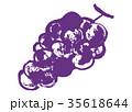 ぶどう 葡萄 果物のイラスト 35618644
