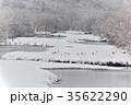 丹頂鶴 雪景色 厳寒の写真 35622290
