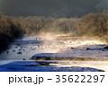 丹頂鶴 冬 雪裡川の写真 35622297
