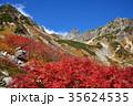 秋の槍ヶ岳 ナナカマドの紅葉 槍沢の秋 槍ヶ岳3180m  35624535