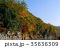 長瀞渓谷 紅葉 秋の写真 35636309