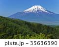 新緑 富士山 残雪の写真 35636390